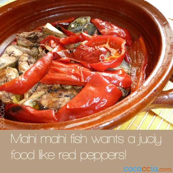 Mahi Mahi Recipes
